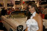 girls-of_sema_auto_show_2008-img_31