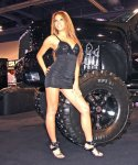 girls-of_sema_auto_show_2008-img_52