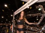 Girls_at_2009_SEMA_Auto_Show_img_14