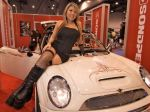Girls_at_2009_SEMA_Auto_Show_img_22